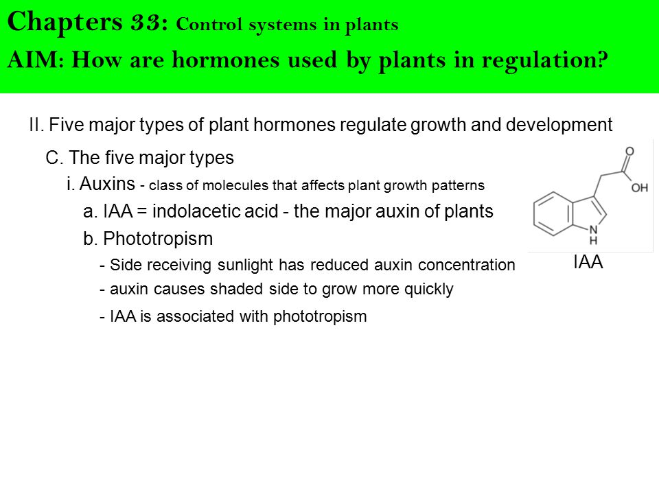 II. Five major types of plant hormones regulate growth and development Chapters 33: Control systems in plants C. The five major types AIM: How are hor