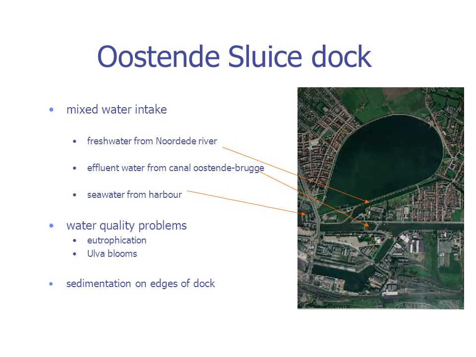 Oostende Sluice dock mixed water intake freshwater from Noordede river effluent water from canal oostende-brugge seawater from harbour water quality problems eutrophication Ulva blooms sedimentation on edges of dock