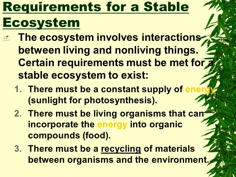 Biotic Factors  Living factors  These factors directly or indirectly affect the environment.  Thus, the organisms, their presence, parts, interacti