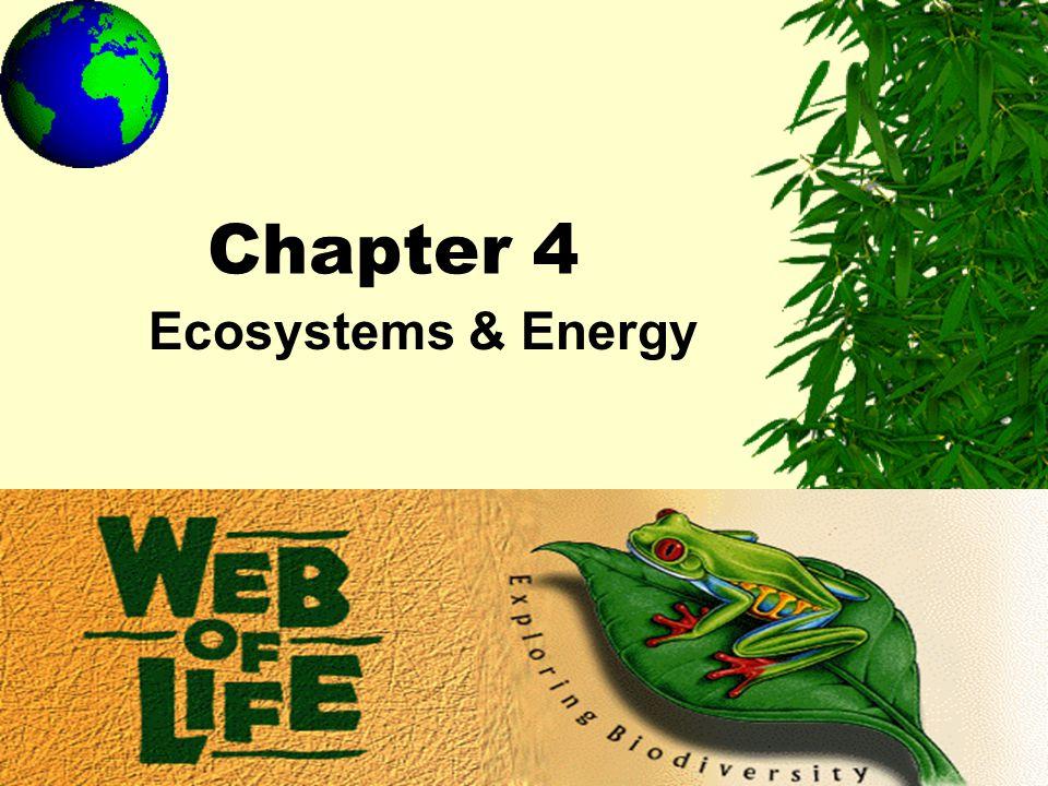 Chapter 4 Ecosystems & Energy