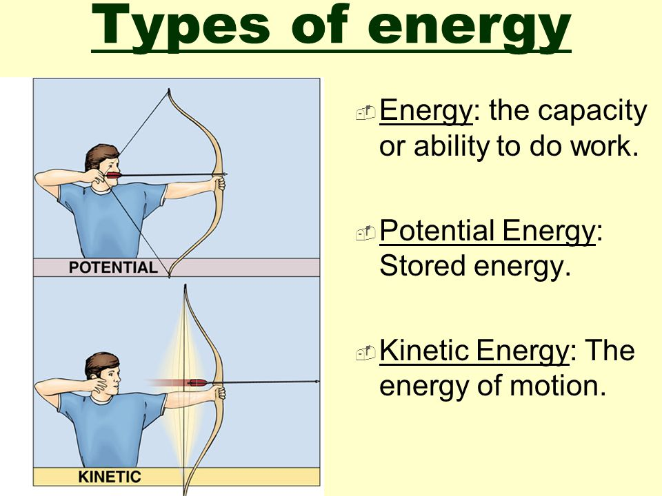 Do Now:  Compare and contrast potential energy and kinetic energy using biological or ecological examples and references