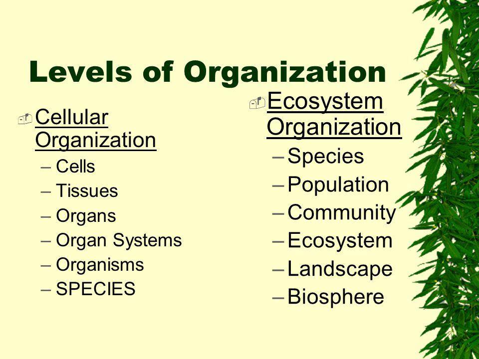 Levels of Organization  Cellular Organization –Cells –Tissues –Organs –Organ Systems –Organisms –SPECIES  Ecosystem Organization –Species –Population –Community –Ecosystem –Landscape –Biosphere