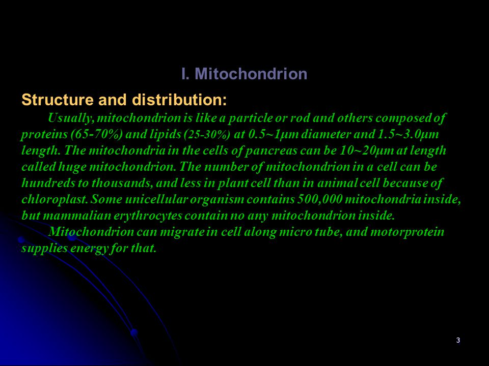 3 I. Mitochondrion Structure and distribution: Usually, mitochondrion is like a particle or rod and others composed of proteins (65-70%) and lipids (