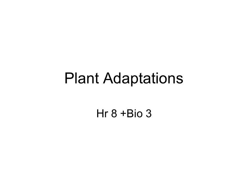Plant Adaptations Hr 8 +Bio 3