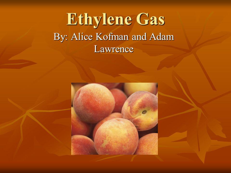 Ethylene Gas By: Alice Kofman and Adam Lawrence