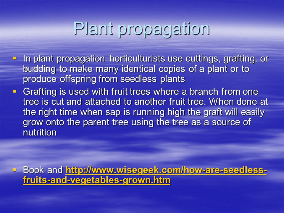 Plant propagation  In plant propagation horticulturists use cuttings, grafting, or budding to make many identical copies of a plant or to produce offspring from seedless plants  Grafting is used with fruit trees where a branch from one tree is cut and attached to another fruit tree.