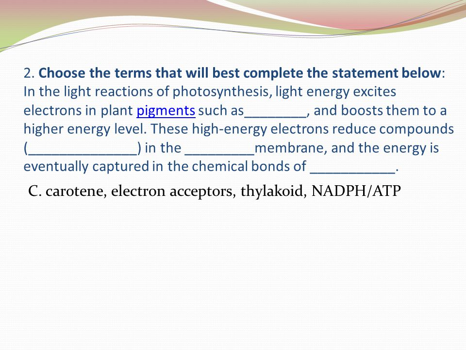2. Choose the terms that will best complete the statement below: In the light reactions of photosynthesis, light energy excites electrons in plant pig