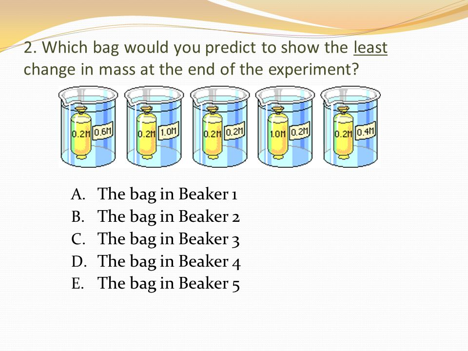 2.Which bag would you predict to show the least change in mass at the end of the experiment.