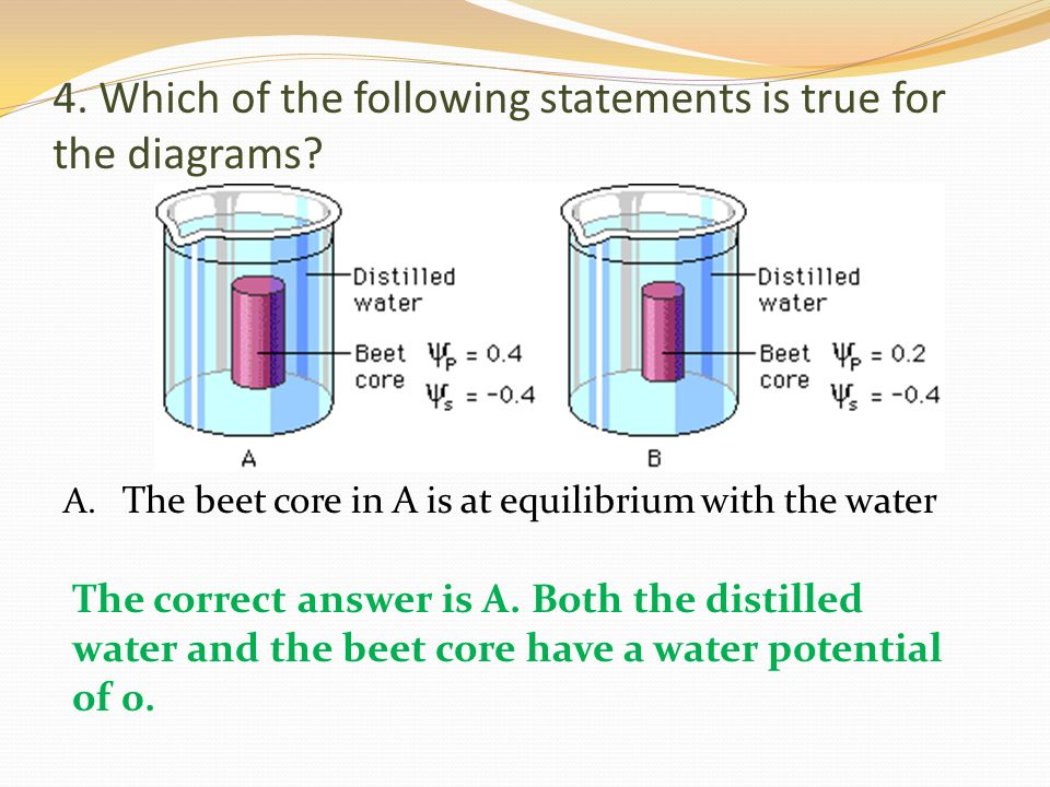 4. Which of the following statements is true for the diagrams? A. The beet core in A is at equilibrium with the water The correct answer is A. Both th