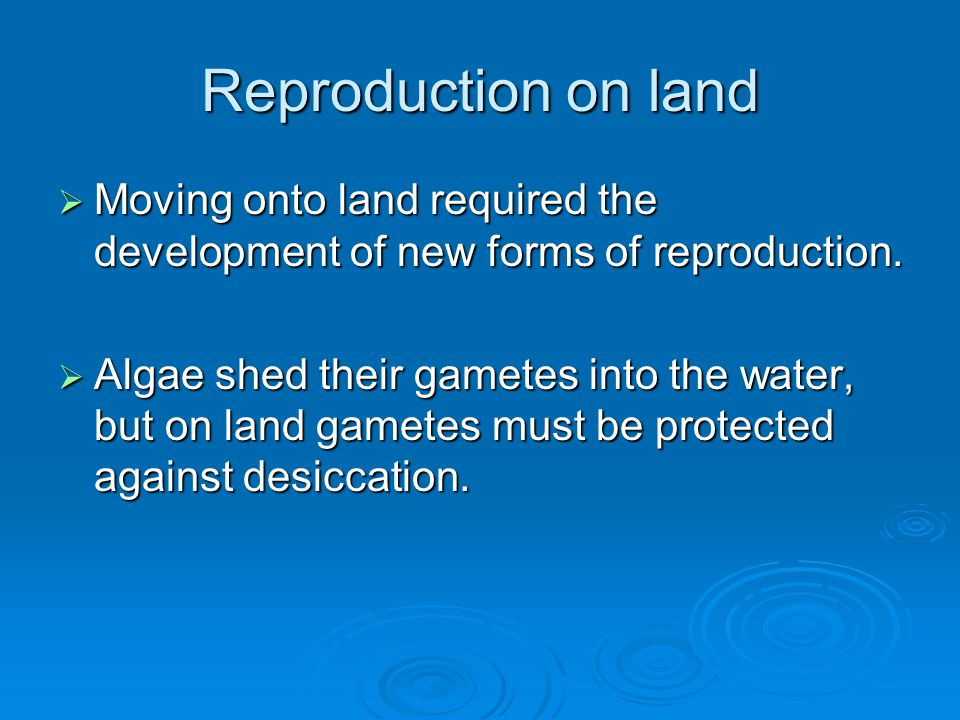 Reproduction on land  Moving onto land required the development of new forms of reproduction.  Algae shed their gametes into the water, but on land
