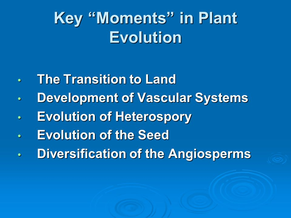 """Key """"Moments"""" in Plant Evolution The Transition to Land The Transition to Land Development of Vascular Systems Development of Vascular Systems Evoluti"""