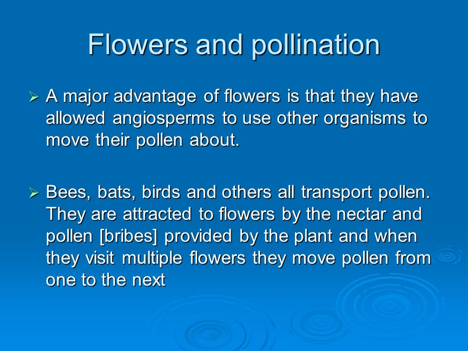 Flowers and pollination  A major advantage of flowers is that they have allowed angiosperms to use other organisms to move their pollen about.  Bees