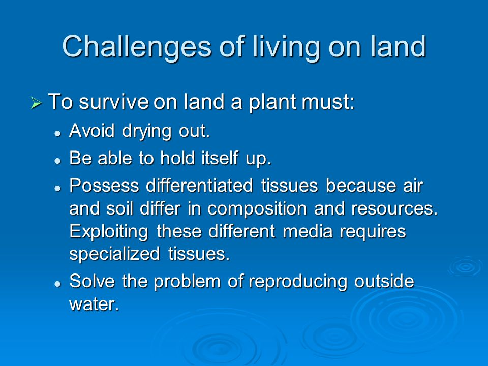 Challenges of living on land  To survive on land a plant must: Avoid drying out. Avoid drying out. Be able to hold itself up. Be able to hold itself