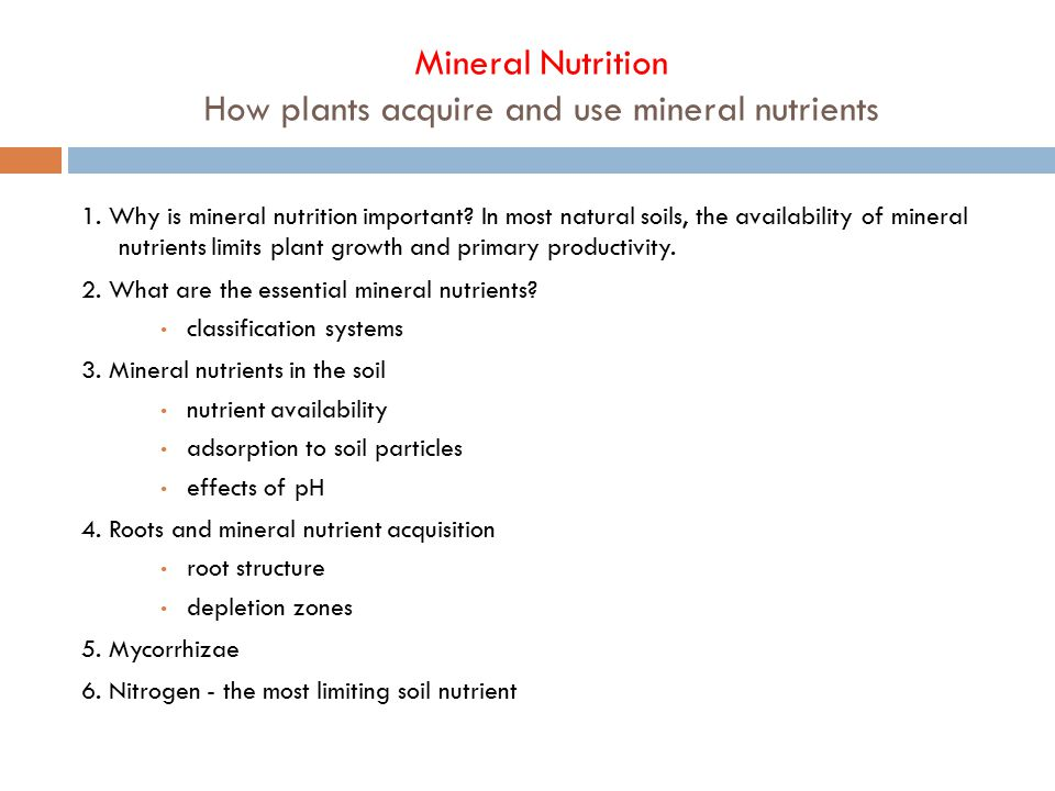 Mineral Nutrition How plants acquire and use mineral nutrients 1.