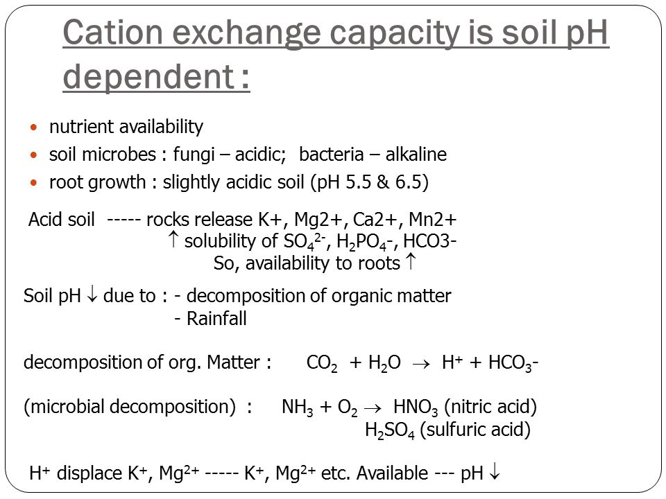 Cation exchange capacity is soil pH dependent : Acid soil ----- rocks release K+, Mg2+, Ca2+, Mn2+  solubility of SO 4 2-, H 2 PO 4 -, HCO3- So, availability to roots  Soil pH  due to : - decomposition of organic matter - Rainfall decomposition of org.