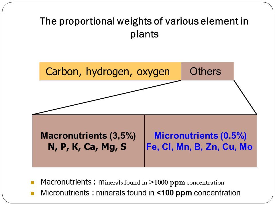The proportional weights of various element in plants Carbon, hydrogen, oxygen Others Macronutrients (3,5%) N, P, K, Ca, Mg, S Micronutrients (0.5%) Fe, Cl, Mn, B, Zn, Cu, Mo Macronutrients : m inerals found in >1000 ppm concentration Micronutrients : m inerals found in <100 ppm concentration