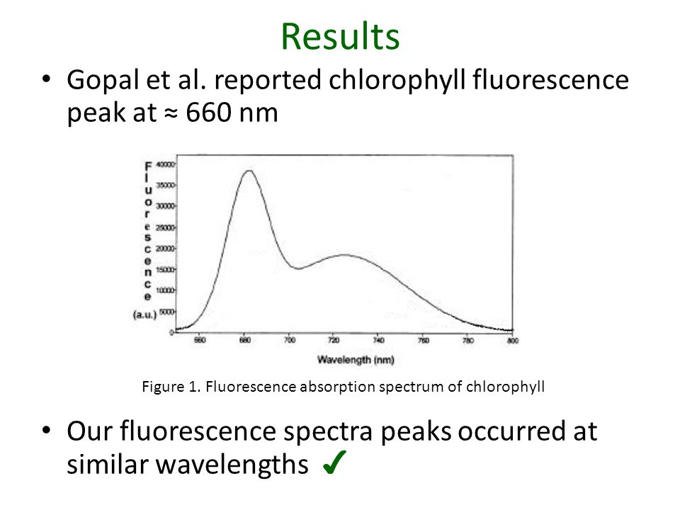 Results Gopal et al. reported chlorophyll fluorescence peak at ≈ 660 nm Our fluorescence spectra peaks occurred at similar wavelengths ✔ Figure 1. Flu