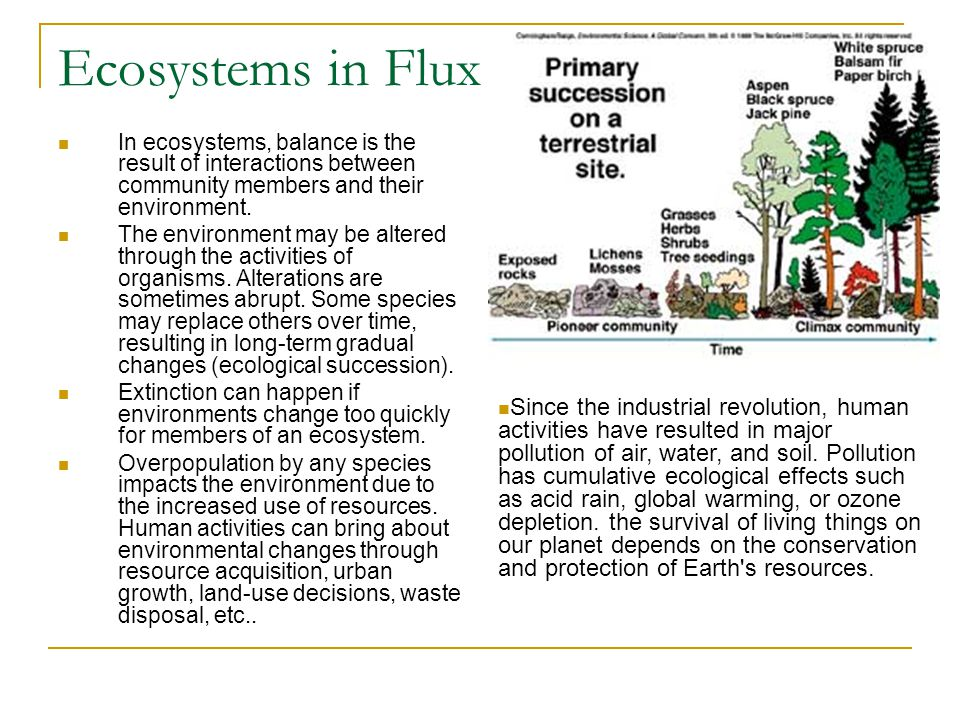 Ecosystems in Flux In ecosystems, balance is the result of interactions between community members and their environment. The environment may be altere