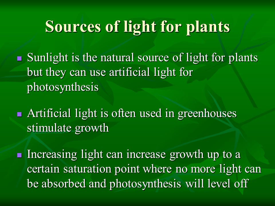 Sources of light for plants Sunlight is the natural source of light for plants but they can use artificial light for photosynthesis Sunlight is the natural source of light for plants but they can use artificial light for photosynthesis Artificial light is often used in greenhouses stimulate growth Artificial light is often used in greenhouses stimulate growth Increasing light can increase growth up to a certain saturation point where no more light can be absorbed and photosynthesis will level off Increasing light can increase growth up to a certain saturation point where no more light can be absorbed and photosynthesis will level off