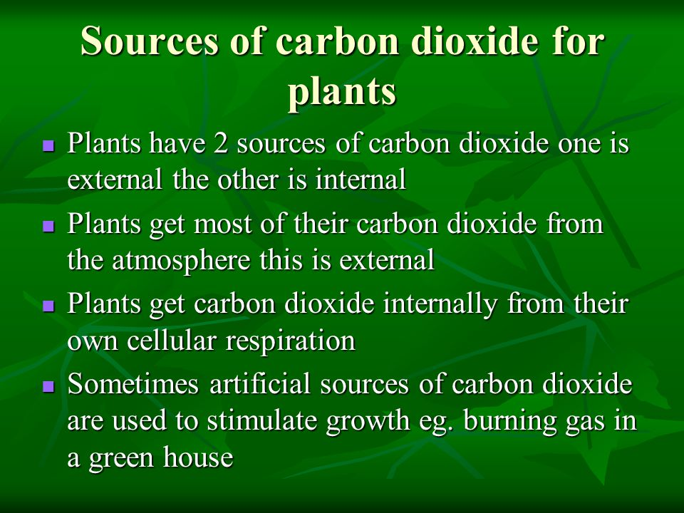 Sources of carbon dioxide for plants Plants have 2 sources of carbon dioxide one is external the other is internal Plants have 2 sources of carbon dioxide one is external the other is internal Plants get most of their carbon dioxide from the atmosphere this is external Plants get most of their carbon dioxide from the atmosphere this is external Plants get carbon dioxide internally from their own cellular respiration Plants get carbon dioxide internally from their own cellular respiration Sometimes artificial sources of carbon dioxide are used to stimulate growth eg.