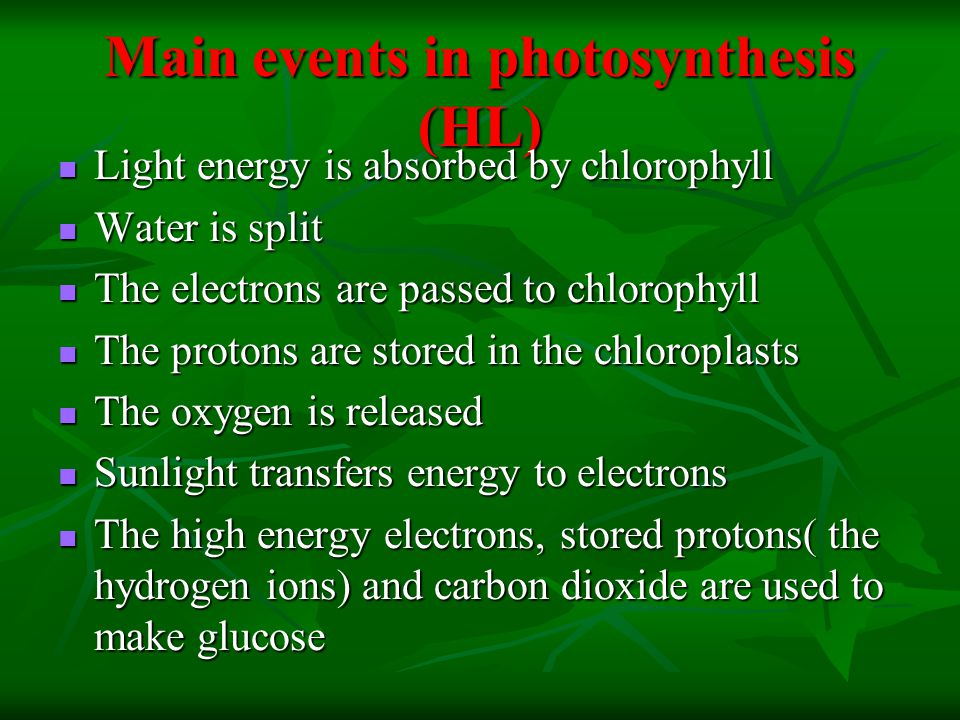 Main events in photosynthesis (HL) Light energy is absorbed by chlorophyll Light energy is absorbed by chlorophyll Water is split Water is split The electrons are passed to chlorophyll The electrons are passed to chlorophyll The protons are stored in the chloroplasts The protons are stored in the chloroplasts The oxygen is released The oxygen is released Sunlight transfers energy to electrons Sunlight transfers energy to electrons The high energy electrons, stored protons( the hydrogen ions) and carbon dioxide are used to make glucose The high energy electrons, stored protons( the hydrogen ions) and carbon dioxide are used to make glucose