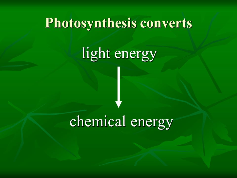 Photosynthesis converts light energy light energy chemical energy chemical energy