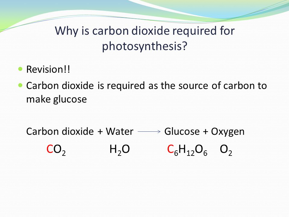 Why is carbon dioxide required for photosynthesis.
