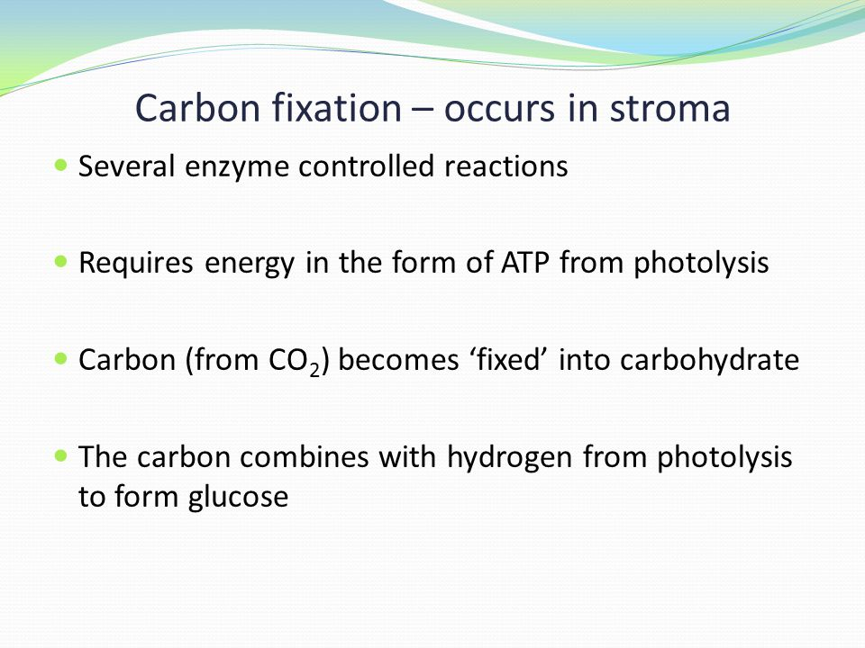 Carbon fixation – occurs in stroma Several enzyme controlled reactions Requires energy in the form of ATP from photolysis Carbon (from CO 2 ) becomes 'fixed' into carbohydrate The carbon combines with hydrogen from photolysis to form glucose