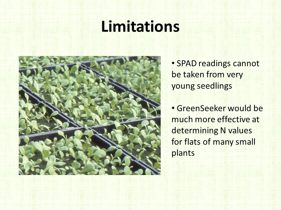 Limitations SPAD readings cannot be taken from very young seedlings GreenSeeker would be much more effective at determining N values for flats of many