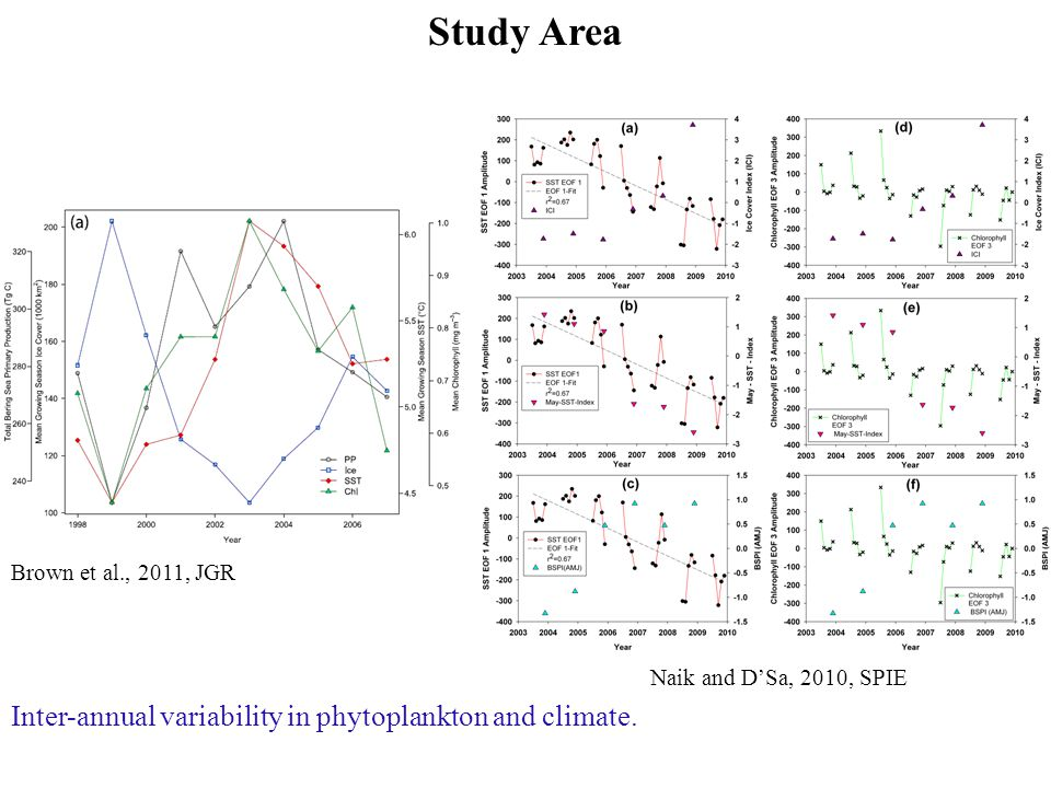 Study Area Naik and D'Sa, 2010, SPIE Brown et al., 2011, JGR Inter-annual variability in phytoplankton and climate.