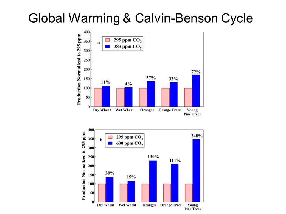 Global Warming & Calvin-Benson Cycle