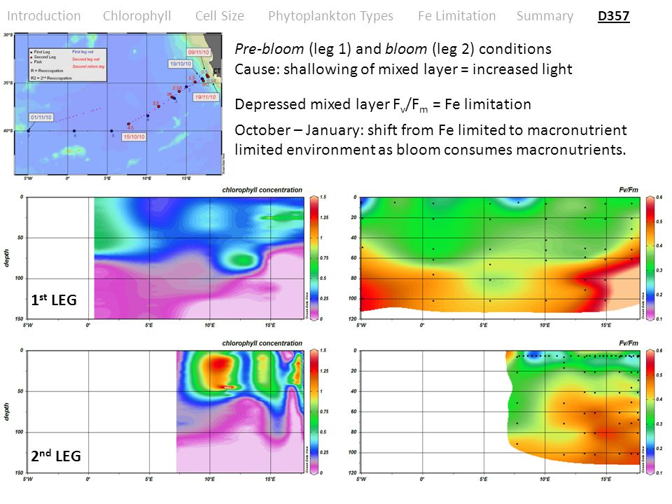 Introduction Chlorophyll Cell Size Phytoplankton Types Fe Limitation Summary D357 Pre-bloom (leg 1) and bloom (leg 2) conditions Cause: shallowing of mixed layer = increased light Depressed mixed layer F v /F m = Fe limitation October – January: shift from Fe limited to macronutrient limited environment as bloom consumes macronutrients.