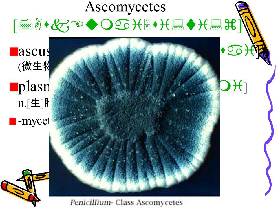 Ascomycetes [ 7AskEumai5si:ti:z ] ascus [ 5AskEs ] (pl. asci[ 5Asai ]) ( 微生物 ) 子囊 plasmogamy [ plAz5mC^Emi ] n.[ 生 ] 胞质融合, 胞质配合 -mycete suff. (后缀)真菌类