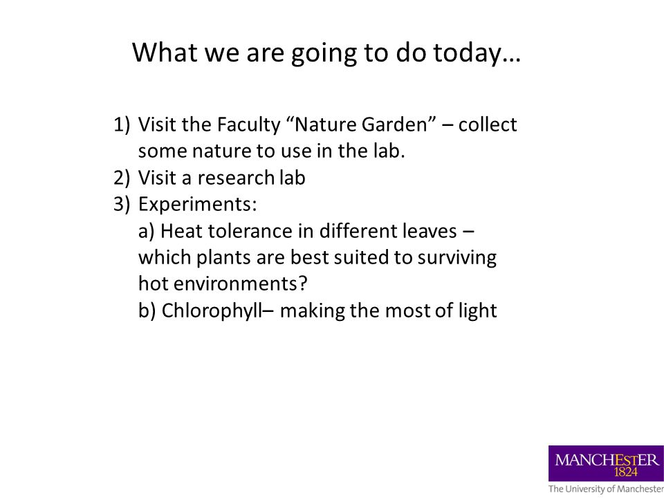 What we are going to do today… 1)Visit the Faculty Nature Garden – collect some nature to use in the lab.