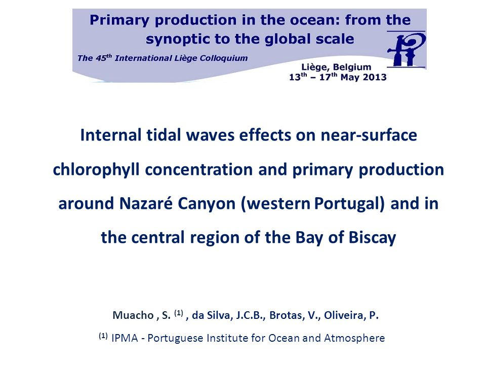 Internal tidal waves effects on near-surface chlorophyll concentration and primary production around Nazaré Canyon (western Portugal) and in the central region of the Bay of Biscay Muacho, S.
