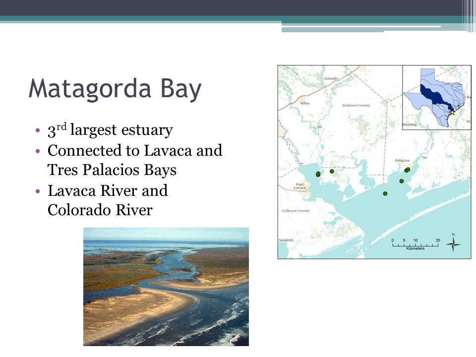 Matagorda Bay 3 rd largest estuary Connected to Lavaca and Tres Palacios Bays Lavaca River and Colorado River