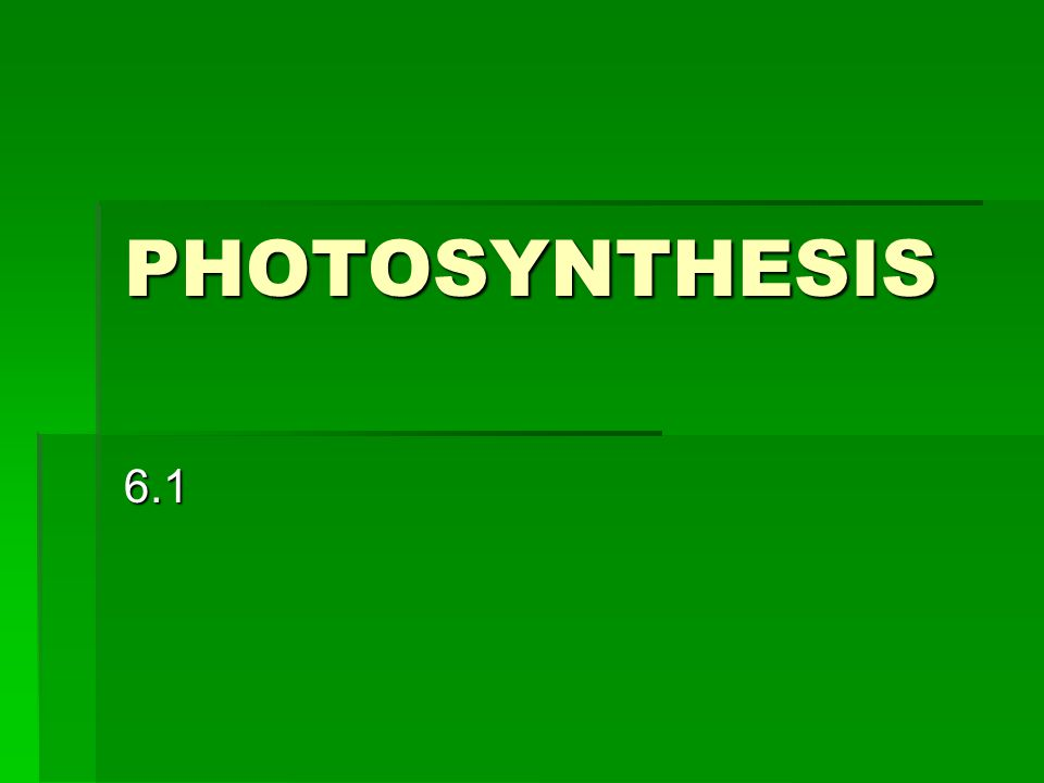 PHOTOSYNTHESIS 6.1