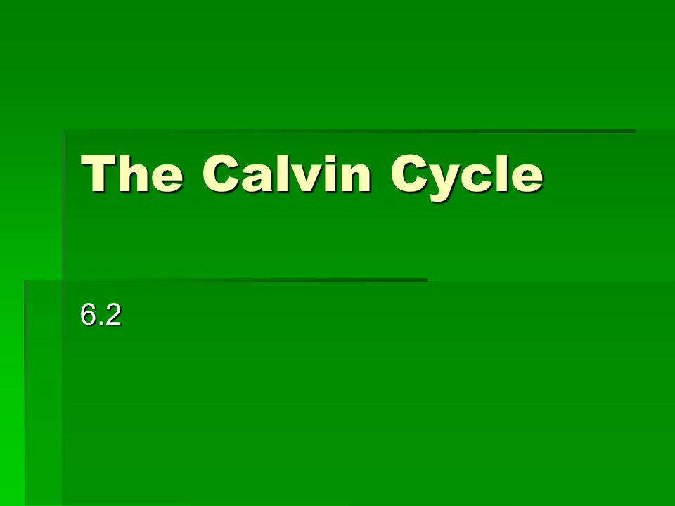 The Calvin Cycle 6.2