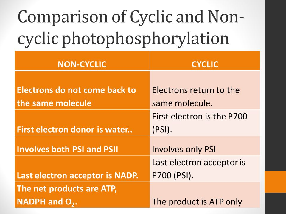 Comparison of Cyclic and Non- cyclic photophosphorylation NON-CYCLICCYCLIC Electrons do not come back to the same molecule Electrons return to the same molecule.