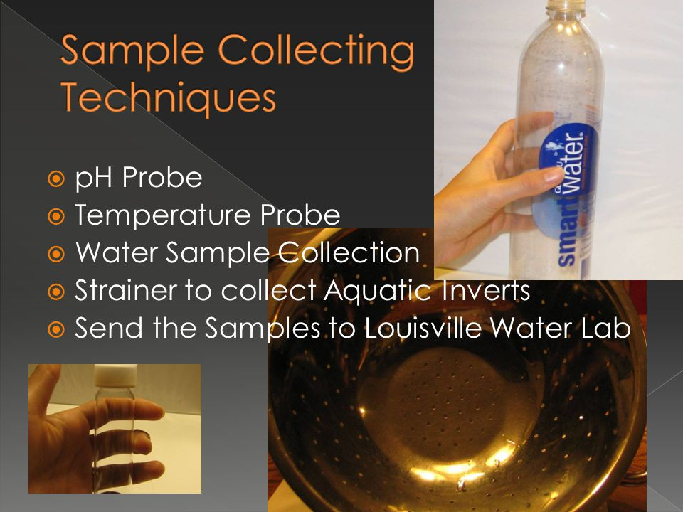  pH Probe  Temperature Probe  Water Sample Collection  Strainer to collect Aquatic Inverts  Send the Samples to Louisville Water Lab