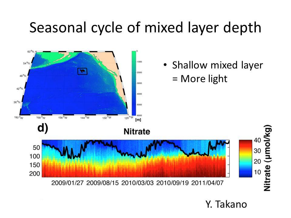 Seasonal cycle of mixed layer depth Y. Takano Shallow mixed layer = More light