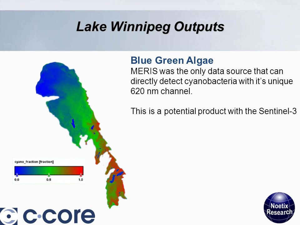 Blue Green Algae MERIS was the only data source that can directly detect cyanobacteria with it's unique 620 nm channel.