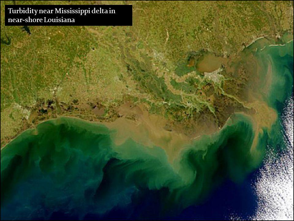 Turbidity near Mississippi delta in near-shore Louisiana