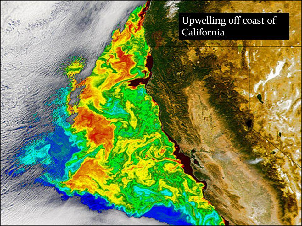 Upwelling off coast of California