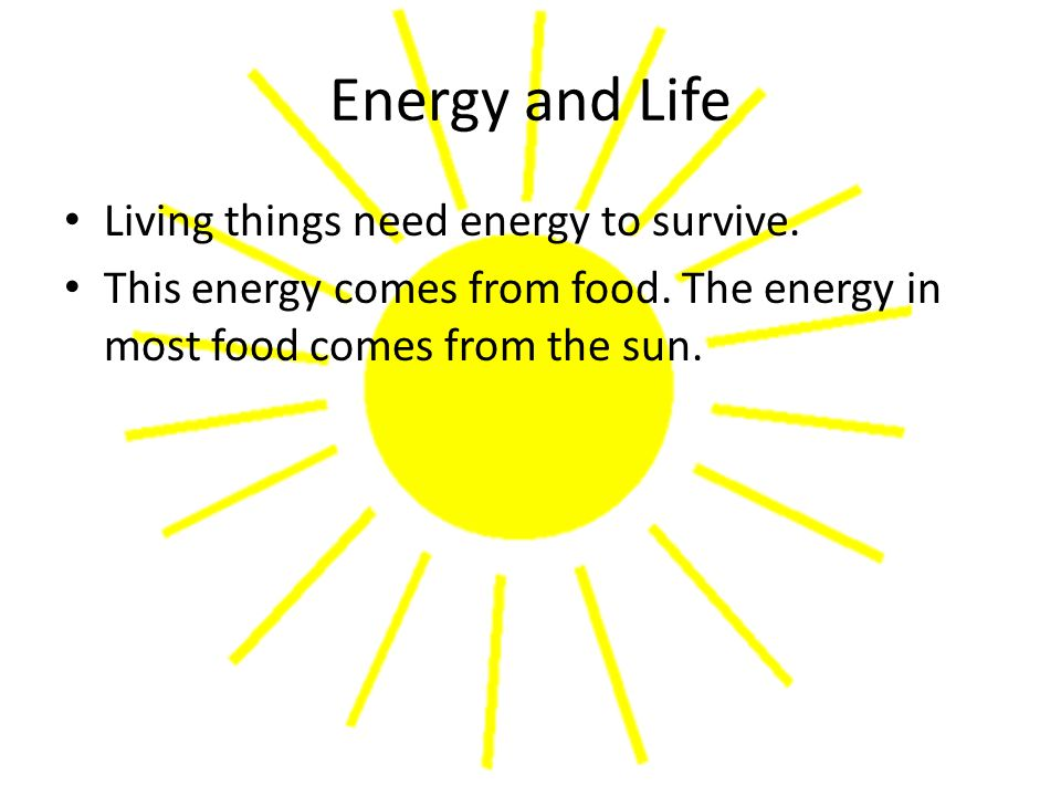 Autotrophs and Heterotrophs Plants and some other types of organisms are able to use light energy from the sun to produce food.