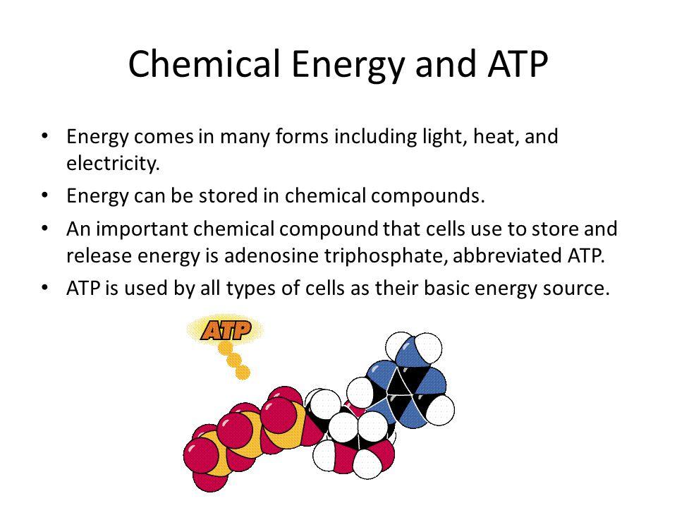 ATP ATP consists of: – adenine – ribose (a 5-carbon sugar) – 3 phosphate groups Sugar adenine Phosphate groups