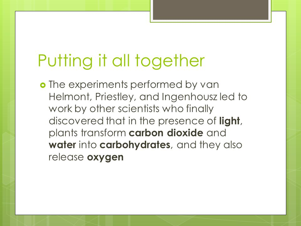 Putting it all together  The experiments performed by van Helmont, Priestley, and Ingenhousz led to work by other scientists who finally discovered that in the presence of light, plants transform carbon dioxide and water into carbohydrates, and they also release oxygen