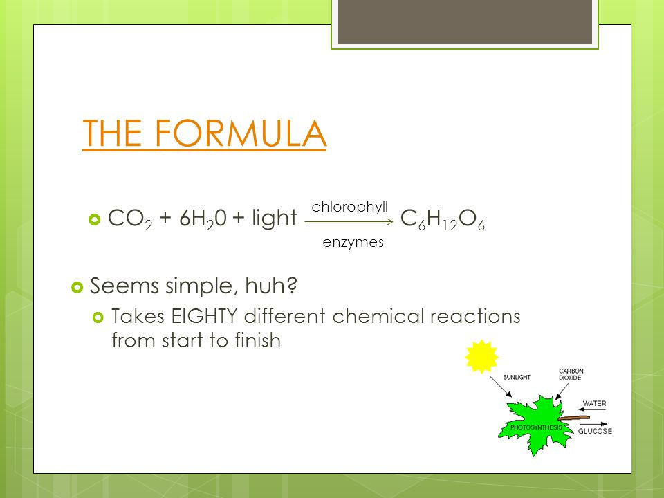 THE FORMULA  CO 2 + 6H 2 0 + light C 6 H 12 O 6 chlorophyll enzymes  Seems simple, huh.