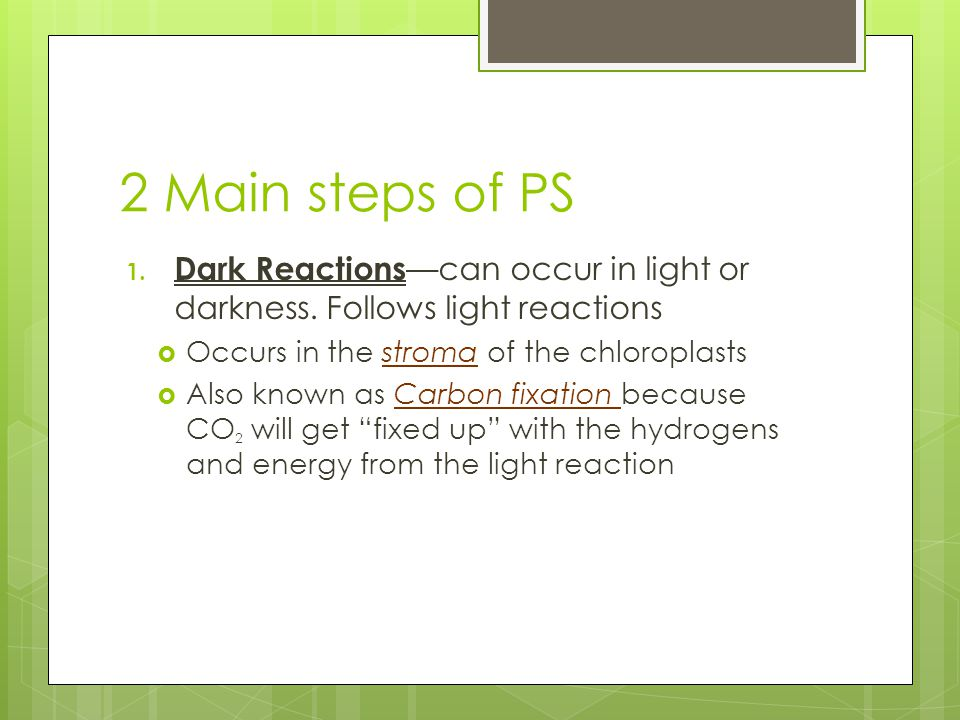 2 Main steps of PS 1. Dark Reactions —can occur in light or darkness.