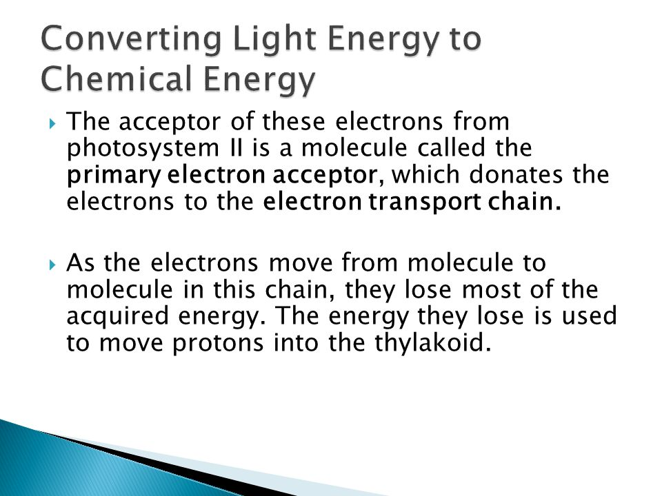  The acceptor of these electrons from photosystem II is a molecule called the primary electron acceptor, which donates the electrons to the electron